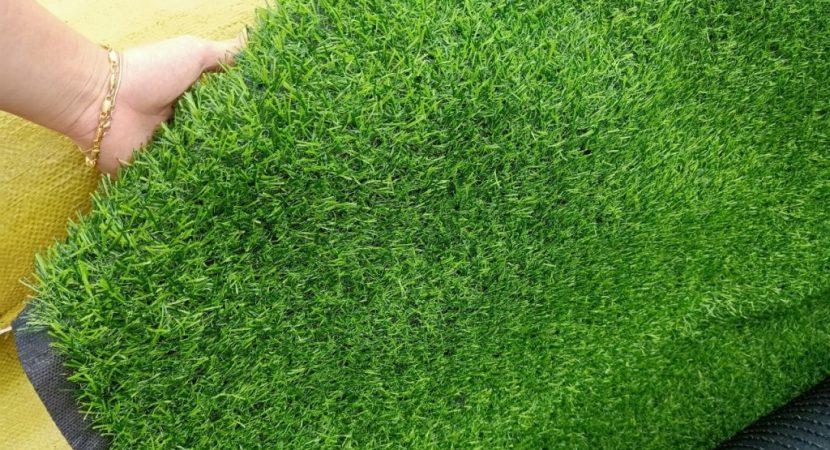 Mua cỏ nhân tạo ở đâu tốt nhất
